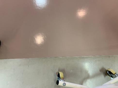 剥離後ワックス塗布作業後