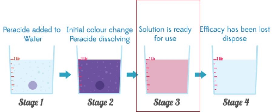 色の変わる活性システム