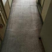 カーペットスチームクリーニング /栃木県 Kホテル様